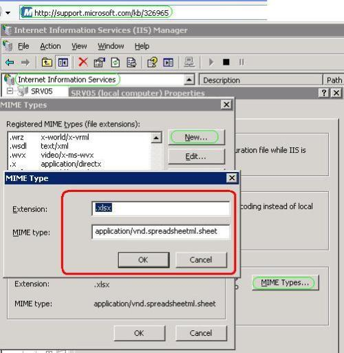 Add MIME type to IIS